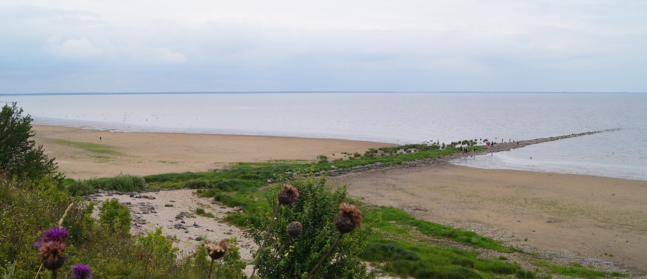 Hinter der Stätte in Korostin am Strand vom Ilmensee